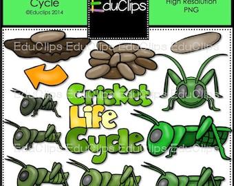 Cricket Life Cycle Clip Art Bundle