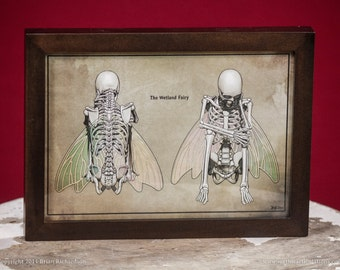Fairy Skeleton Faux-Scientific Print