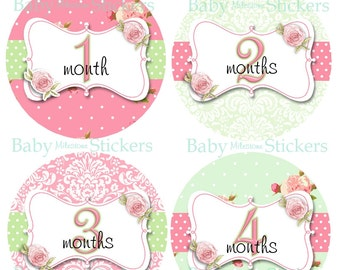 Monthly Girl Stickers Milestone Month Baby Sticker Floral Roses Vintage Nursery Decor Pink Green Bodysuit Photo Prop   027