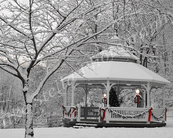 Snow In The Park...Winter in New Jersey, 8x10 Inch Print