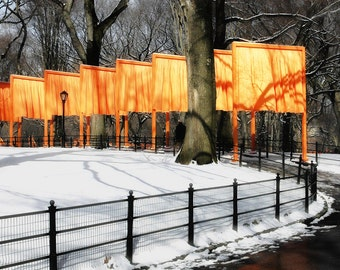 Christo Gates in Central Park with Snow,  Iron Wrought Fence, Walkway, n NYC