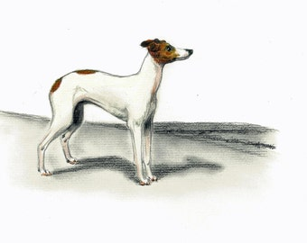 Italian Greyhound Dog Art Vintage Style Print