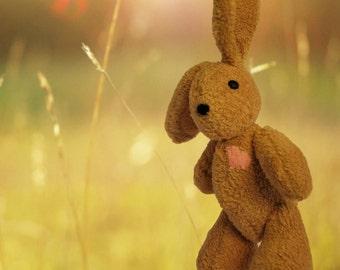 BAM is a HANDSEWN plush bunny :)