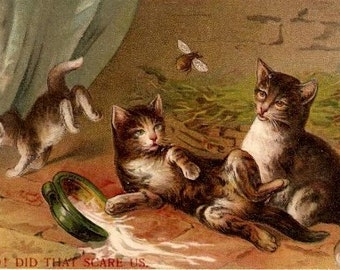 "Did That to Scare Us"" Cats 1909 Postcard with Bee"