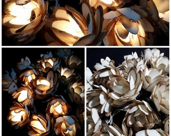 lotus(close) white-brown String Lights Fairy Lights - Wedding from real Sesbania