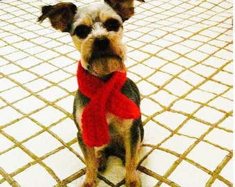 Scarf for Small Dog