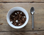 Chocolate Coconut Cereal with Organic Fruit - 1/2 lb - gluten free, paleo friendly, sugar free, all organic