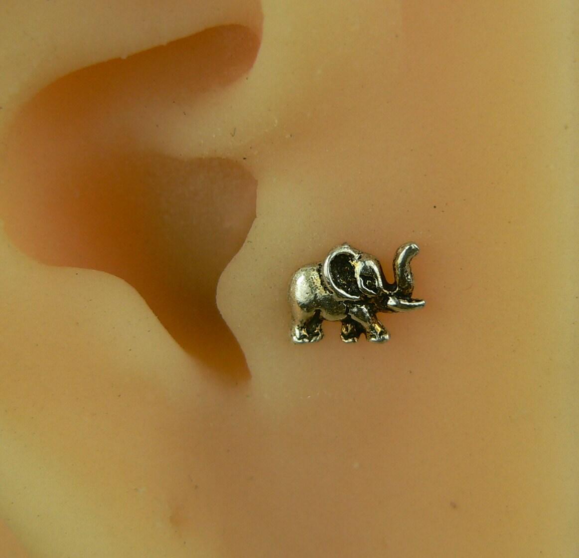 ear piercings tragus jewelry - photo #36