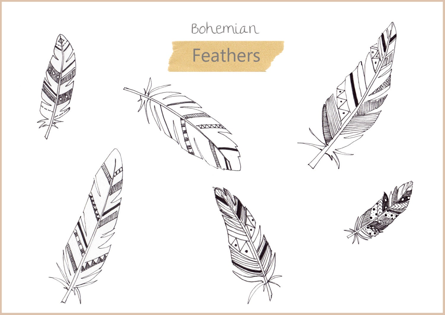 hand drawn bohemian feathers in png and jpeg high resolution