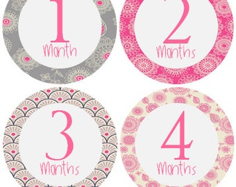 Monthly Baby Stickers Girl, Milestone Stickers, Month Stickers, Baby Month Stickers, Baby Stickers, Pink #126