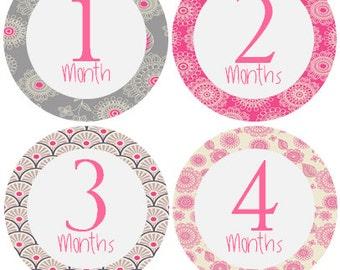 Monthly Baby Stickers Girl, Milestone Stickers, Month Stickers, Baby Month Stickers, Baby Stickers, Pink #126