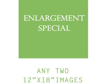 ENLARGEMENT SPECIAL Any Two Photographs from any section in my shop, 12x18 Size