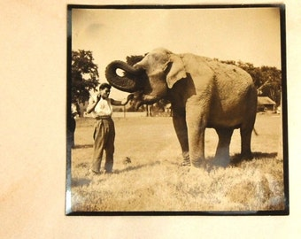 Rare Antique WATER FOR ELEPHANTS Photograph Negative Circus Performer with Elephant Animal Trainer Depression Circa 1930
