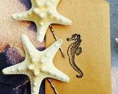 Two Starfish Hair Pin Set/ Beach Hair, Beach Wedding, Mermaid,Beach themed shower, Knobby starfish, Vacation