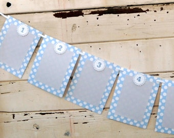 Boy Shabby Chic 12 Month Photo Banner- 1st Birthday- Blue & Grey