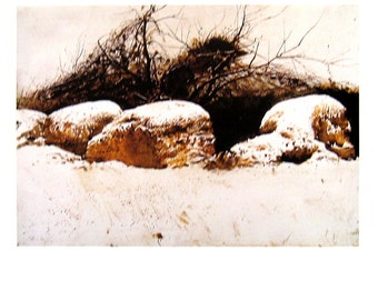 Andrew Wyeth Art - Shredded Wheat - 1992 Vintage Reproduction Book Page - 12 x 9