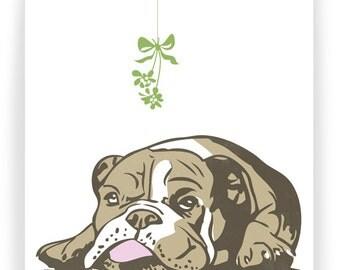 Bulldog and Mistletoe - Holiday Card Boxed Set - 8 cards