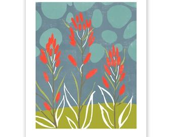 Indian Paintbrush Block Print Art Reproduction