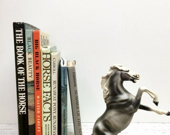 SALE, Horse Book, 7 books, Black Beauty, Equestrian, Equestrian Book Collection, Horse Gift, Horse Ephemera, Book about Horses, Horse Breeds