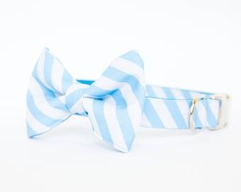 North Carolina Tar Heels Bow Tie Dog Collar