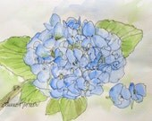 Blue Hydrangea Nature Art Botanical Watercolor Card Blank One of a Kind Original Painting