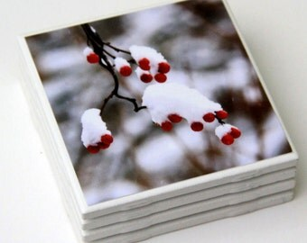 Winter Decor, Red Berries, White Snow, Tile Coaster Set, 4X4 Ceramic, Photography, Set of 4, Nature Photo