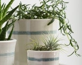 Mini Striped Porcelain Planter with Drainage