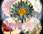 Summer Garden - 45 1x1 Inch JPG images - Digital Collage Sheet