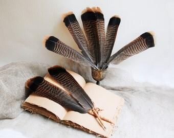 Turkey Feather Quill Dip Pen, Ball Point Pen With Feather, Natural feather pen, Wedding feather pen, guest book pen, quill pen ballpoint pen