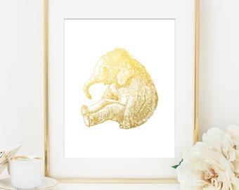 Baby Elephant Nursery Room Decor Etsy