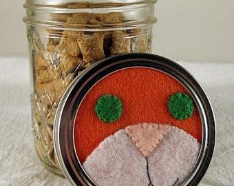 Orange Cat Treat Jar -- Keep Cat Treats Fresh and Safe from Cats