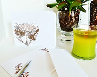 Botanicals Blank Note Cards