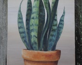 Potted Snake Plant Canvas