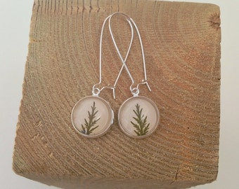 Natural jewelry, Terrarium earrings, leaf earrings, nature inspired jewelry, green earrings for women, jewelry from nature, jewelry nature