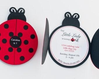 Set of 12+ Ladybug Party Invitation, Ladybug 1st Birthday Party, Ladybug Invitation, C006