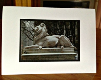Photograph Card of Lion from  New York Library