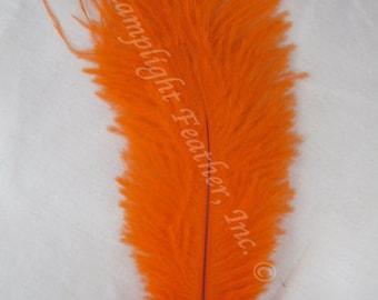 """Ostrich feather, Orange, 8-12"""",  per each (ossora)"""