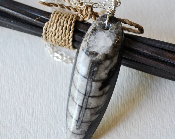 Black and Gray Fossil Orthoceras pendant on sterling silver chain  boho, simple, minimalist