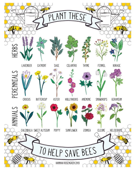 "8x10"" Plant These to Help Save Bees Print"