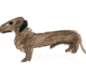 Denver the Dachshund, fine art print of a dog, brown and black, 8 x 10 archival print