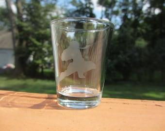 Captain Falcon Knee Etched Shot Glass