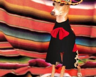 Antonio BONEderas as--El Mariachi!! Halloween Pet Costume