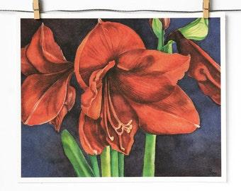 red flowers art print, watercolor amaryllis painting, botanical wall art, 8x10