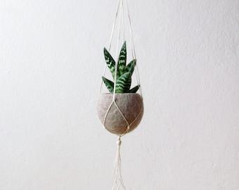 Hanging planter / Macrame plant hanger / Beige Felt planter / air plant vase/ modern home decor / CHOOSE YOUR COLOR