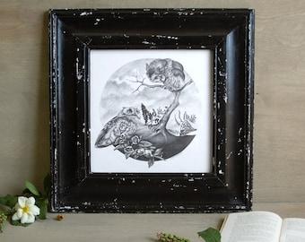 Eastern Screech Owls Orignal Graphite Illustration