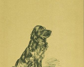 COCKER SPANIEL Dog Print, Puppy Print, Wall Decor, Wall Art, Antique Decor, Interior Design, Lucy Dawson, 1930s Home Decor, Dog Decor, B-3