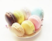 Macaroon Squishy Charm (scented)
