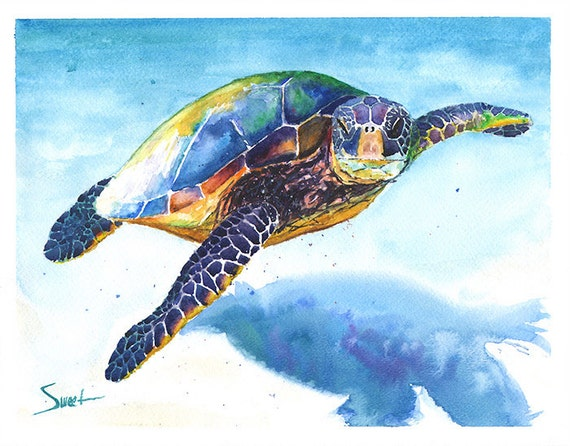 Turtle watercolor sea life art sea turtle print marine for Sea life paintings artists
