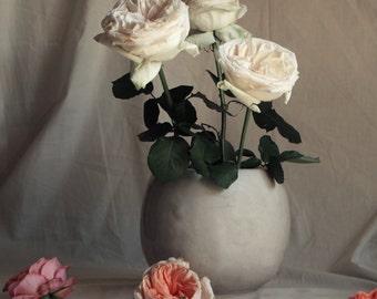 Floral Still Life of Roses