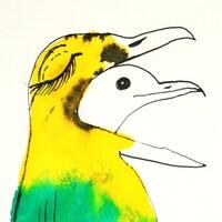 birdaday